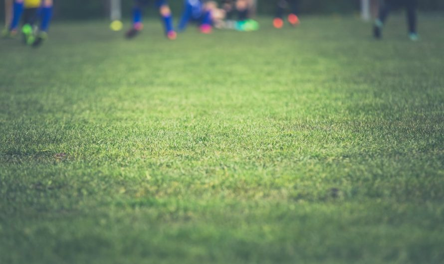 Sejarah Berkembangnya Judi Bola Dari Tahun ke Tahun